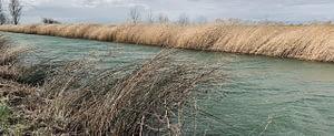 Ein fließender Fluss mit Seegrass am Rande. Durch das fließende Wasser verändert sich das Bild des Flusses. Symbolisch für die Phasen der Veränderung